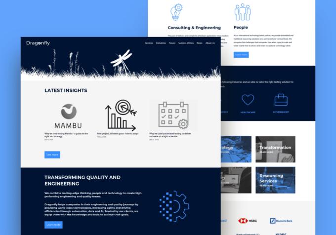Sitio Web Dragonfly